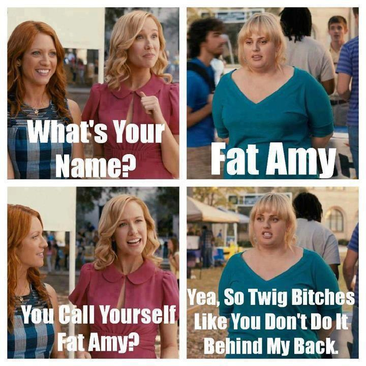 Fat-Amy-pitch-perfect-32534849-720-720