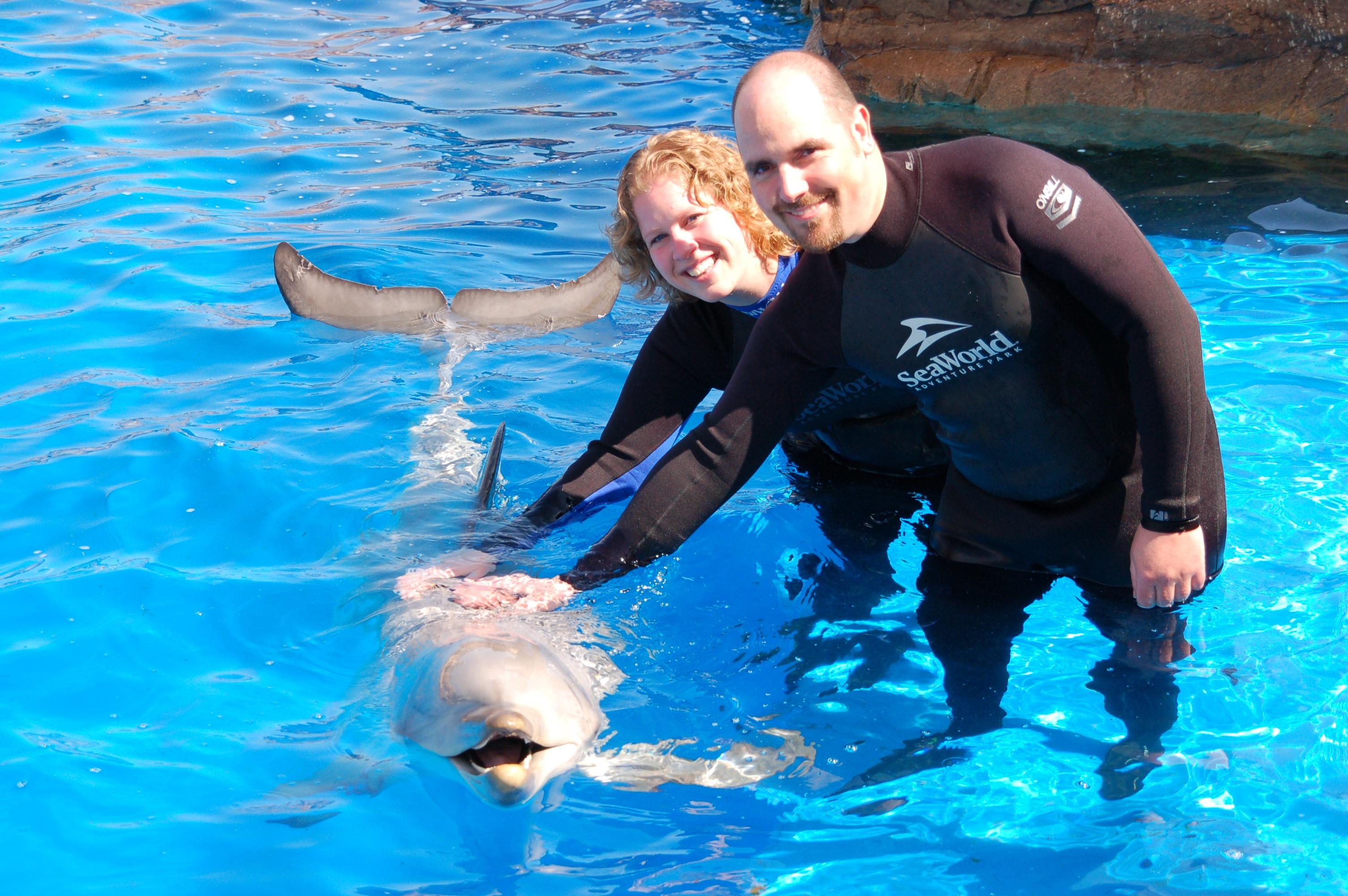 Samen met de dolfijn