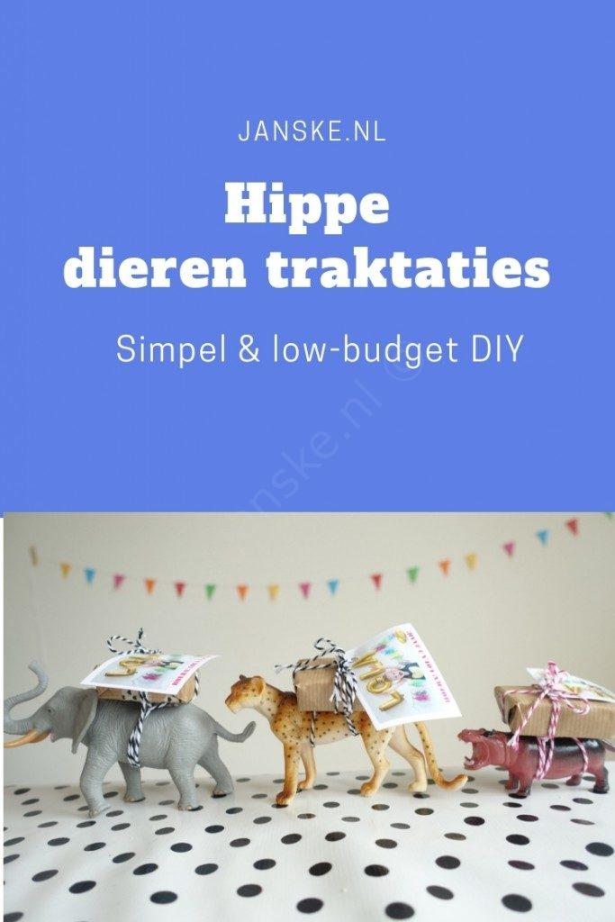 DIY #8 - Hippe dieren traktaties (Crea-hop+winactie!)