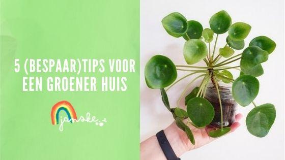 5 (Bespaar)tips voor een groener huis