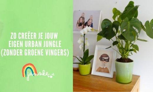 Zo creëer je jouw eigen urban jungle (zonder groene vingers)